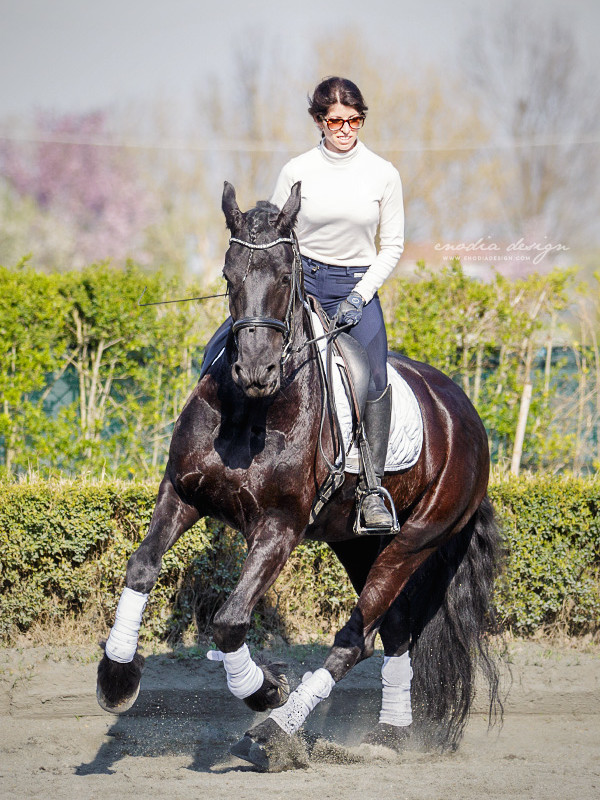Stage Aironi Dressage | Beatrice Cassanmagnago e Fransje