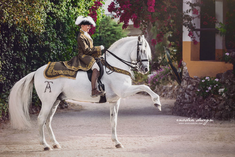 Another handsome stallion and his skillful rider performing a jambette, in the blooming garden of Centro Equestre Celg. Thanks Lusitano Wold and Rita Fernandes for this chance! <3 ≈ © Giulia Basaglia - Enodia Design & Photography