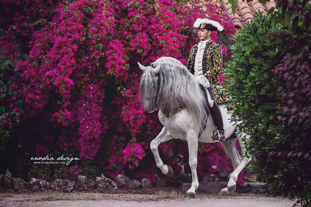 Classical Dressage is one of my greatest passion and having the opportunity to photograph amazing riders performing high school exercises with handsome stallions and costumes, in an enchanting garden, in full bloom, was a dream I had for a long time. Thanks Lusitano World and Rita Fernandes for this chance! <3 ≈ © Giulia Basaglia - Enodia Design & Photography