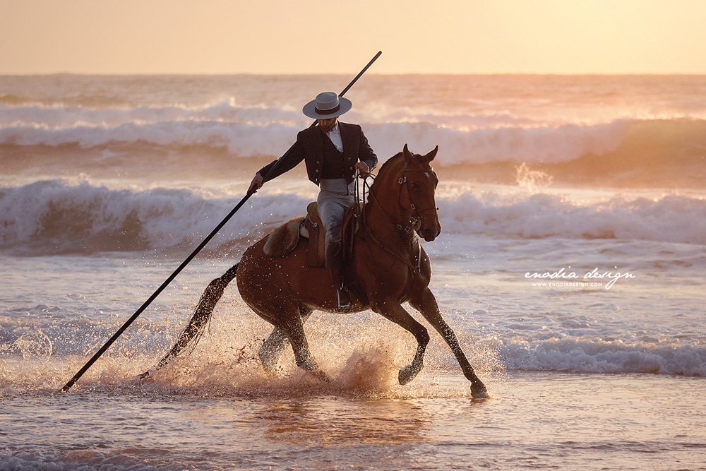 This is one of my favorite photoshooting so far. I mean, who wouldn't love to photograph six stallions at the beach, with golden hour light? Every equestrian photographer's dream! In this photo, Frederico Peres and his stallion Duque. Thanks Lusitano World and Rita Fernandes for this chance! © Giulia Basaglia - Enodia Design & Photography